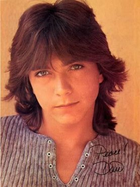 David Cassidy (from DavidCassidyFansite.com)
