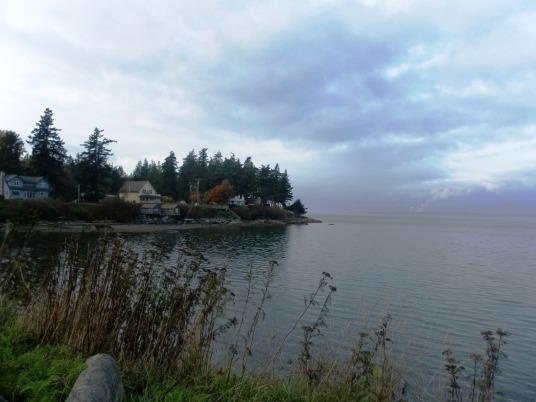 Lummi Island Shoreline
